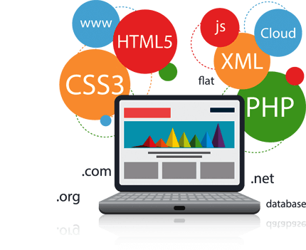 Website Development, Dynamic Website in Delhi, Noida, Gurgaon, Ghaziabad, India